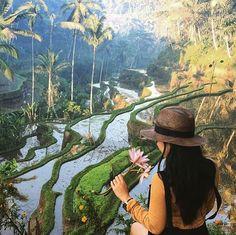 """T e g a l l a l a n g R i c e T e r r a c e  Photo courtesy @mahakemala Photo location : Desa Ceking, Tegallalang Rice Terrace, Ubud, Bali  Tegallalang…"""