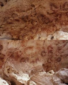 Upper Paleolithic Female Artists Responsible for Cave Paintings from 40,000 years ago. 200 hand stencils of Gua Tewet cave in Borneo, Spain, were part of the study. National Geographic Society says about three-fourths of the hand stencils found in caves in southern France and northern Spain were probably made by females. The new find that women made cave paintings suggests that women too took the role of hunting.
