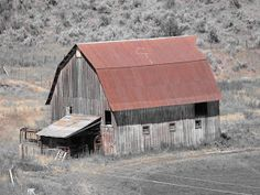 Lane and Syl: Barns of Washington State** Country Barns, Old Barns, Country Life, Mill Farm, Farm Barn, Old Houses, Abandoned Houses, Farm Images, Barn Pictures