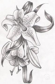 Pencil drawings                                                                                                                                                     Más