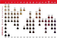 İgora Royal Saç Boyası Renkleri katalogu 2012-2013
