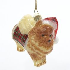 Amazon.com: Kurt Adler Noble Gems Pomeranian Glass Christmas Ornament: Home…