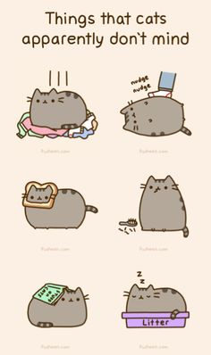 i love pusheen the cat