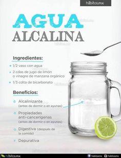 Calendula Benefits, Matcha Benefits, Lemon Benefits, Coconut Health Benefits, Natural Home Remedies, Herbal Remedies, Health Remedies, Cold Remedies, Bloating Remedies