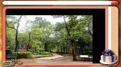 Bondla Wildlife Sanctuary,Goa, India