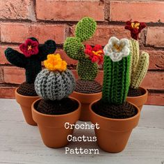 Etsy :: Your place to buy and sell all things handmade Crochet Cactus, Freeform Crochet, Party Giveaways, Different Types Of Flowers, Small Cactus, Aran Weight Yarn, Sock Crafts, Sock Yarn, Heart Patterns