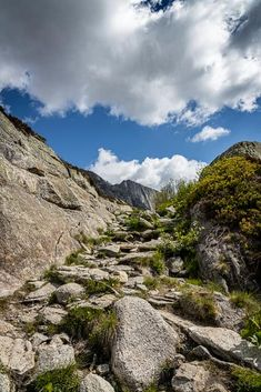Steilwand Andermatt, Kanton, Switzerland, Flora, Hiking, River, Outdoor, Viajes, Round Round