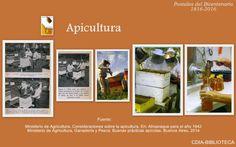 Postal sobre apicultura