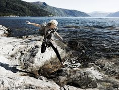 Malgorzata Foremniak/Gala Bald Eagle, Bird, Animals, Animales, Animaux, Birds, Animal, Animais