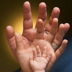 Baby and parents hand photo