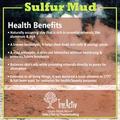 Sulfur mud is used by TreeActiv because it aids in clearing pores while balancing surface oils on the skin, giving you a balanced and youthful glow. Health Benefits, Clear Pores, Unclog Pores, Hormonal Acne, Acne Free, Oils For Skin, Mud, Anti Aging