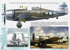 P-47D ,Artist :Thierry Dekker