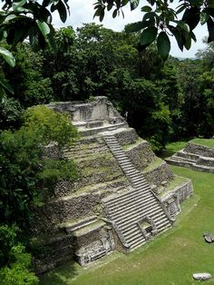 The Mayan pyramid at Caracol in Cayo district, Belize (by mike.bulter) So did anyone else hear about the pyramid they accidentally plowed over in Belize? I WAS SO PISSED! Top Places To Travel, Places To See, Tikal, Wonderful Places, Beautiful Places, Amazing Places, Sea Trek, Mayan Ruins, Central America