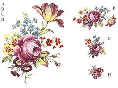 Xray Flower, Flower Art, Embroidery Neck Designs, Tattoo Feminina, Design 24, Gold Pattern, Botanical Illustration, Vintage Flowers, Flower Designs
