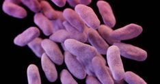Aggressive testing at hospitals and clinics can stop superbugs