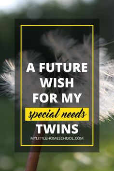 My future wish for my special needs twins is to be safe, healthy and happy. And it is my life's work to make sure that this wish comes true! Twins Schedule, Breastfeeding Twins, My Litt, Special Needs Mom, Developmental Delays, Mom Advice, Sensory Activities, Speech And Language, Wish