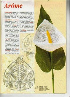 ergahandmade: Crochet Flower - Calla Lily + Diagrams