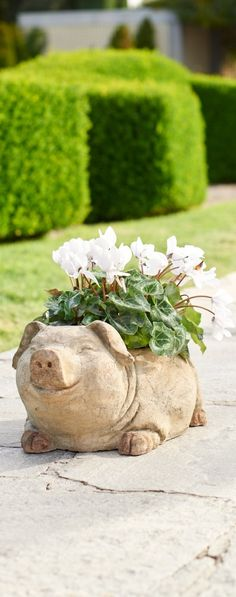 Add our chic pig planter to your patio and prepare yourself for squeals of delight. He's an adorable piece sure to add character and charm to your outdoor space.