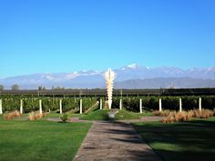 Beautiful day at the vineyard! @Bodega Norton Mendoza, Argentina