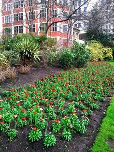 Embankment Gardens in London, England