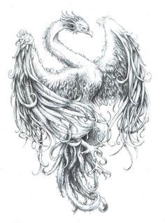 asian-phoenix-tattoo-sample.jpg (736×995)