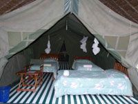 We provide good comfortable accommodation in Masai Mara as well as a scheduled itinerary for individuals, small groups, students, business people, ngo staff, honey mooners as well as customised itineraries to meet your specific interests and budget.