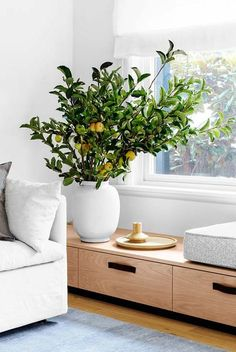 Inspiring living room storage australia on this favorite site Living Room Bench, Living Room Storage, Living Room Windows, Living Room Decor, Window Benches, Built In Bench, Bench Seat, Home And Deco, Living Room Inspiration