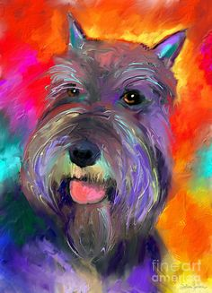 Colorful Schnauzer Dog Portrait Print Painting by Svetlana Novikova - Colorful Schnauzer Dog Portrait Print Fine Art Prints and Posters for Sale