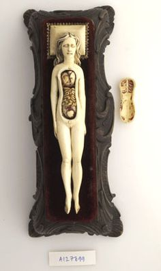 Ivory anatomical model of pregnant female.    17th-century ivory anatomical model of a pregnant female with removable parts possibly used by obstetric specialists or midwives to provide reassurance for pregnant women. Possibly German.  Credit:  Wellcome Library, London