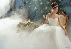 Cinderella Wedding Gown from theexcitedbride.com