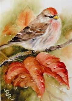 "Daily Paintworks - ""All Wet"" - Original Fine Art for Sale - © Paulie Rollins … Watercolor Bird, Watercolor Animals, Watercolor Paintings, Watercolors, Bird Illustration, Bird Drawings, Bird Pictures, China Painting, Little Birds"