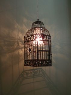 hanging bird cage lamp