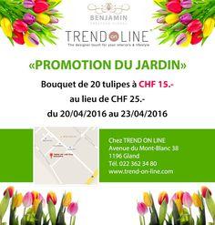 Photo Bouquet, Gland, Shopping, Tulip, Mont Blanc, Bunch Of Flowers, Bouquets, Floral Arrangements, Nosegay