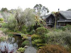 te kainga marire images | NZ native garden – Te Kainga Marire