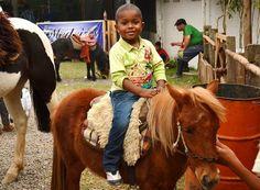 Para o público que não vive no campo, dá-se a oportunidade de aprender a montar, desde crianças a adultos