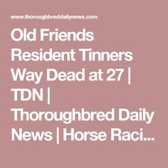 Old Friends Resident Tinners Way Dead at 27 | TDN | Thoroughbred Daily News | Horse Racing News, Results and Video | Thoroughbred Breeding and Auctions