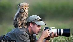 カメラマンに興味津々な動物画像                                                                                                                                                                                 もっと見る
