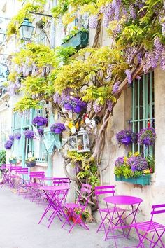Lovely arrangement of orchid, purple and lavender colors. I would guess this is somewhere in Greece.