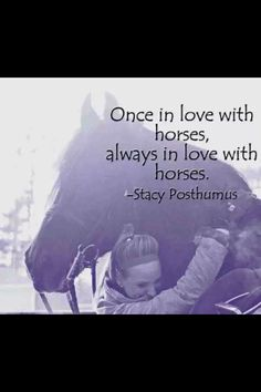Horse quote. Once in love with horses, always in love with horses...yep!