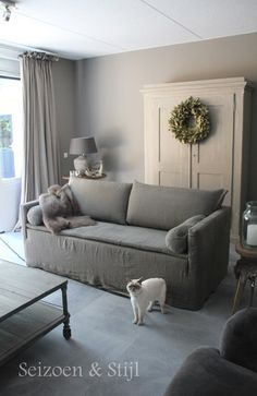 love the sofa and color scheme