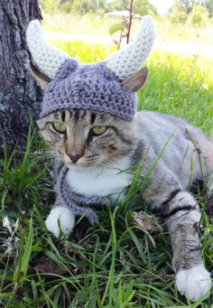 Crochet Viking Cat Hat