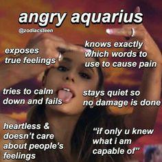 Pisces And Aquarius, Astrology Aquarius, Aquarius Quotes, Zodiac Signs Astrology, Zodiac Signs Horoscope, Aquarius Facts, Zodiac Memes, Zodiac Star Signs, Aquarius Aesthetic
