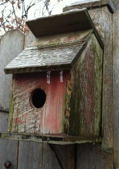 Bird barn...