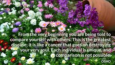 From the very beginning you are being told to compare yourself with others. This is the greatest disease; it is like a cancer that goes on destroying your very soul. Each individual is unique, and comparison is not possible. OSHO #comparison #disease #destroying #soul #unique #osho