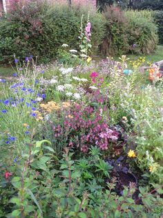 The Facets of Life: July Garden