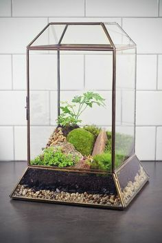 Terrariums are a fun and trendy way to bring the great outdoors inside this spring! Here are 45 Adorable Spring Terrariums For Home Décor from DigsDigs for inspiration.