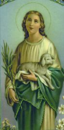 """St. Agnes - was a Roman girl who was only thirteen years old when she suffered martyrdom for her Faith. Agnes had made a promise, a promise to God never to stain her purity. Her love for the Lord was very great and she hated sin even more than death! Since she was very beautiful, many young men wished to marry Agnes, but she would always say, """"Jesus Christ is my only Spouse.""""Feastday: January 21, Patron of the Children of Mary"""