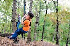 The Monkey Grove - go climb trees with the kids at #sandyspringadventurepark #md   www.our-kids.com
