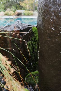 Landscape architect Arica Duhrkoop-Galas used a bubbler fountain to ...