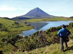 Hiking in Pico, Azores, Portugal  P1010185 pico-heijasteena
